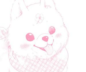 dog and pink image