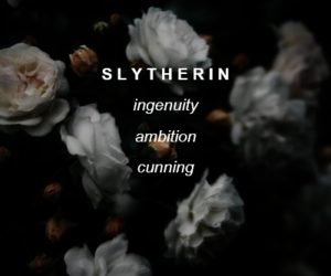harry potter and slytherin image