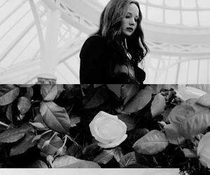 black and white, Jennifer Lawrence, and the hunger games image