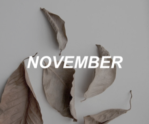 autumn and november image