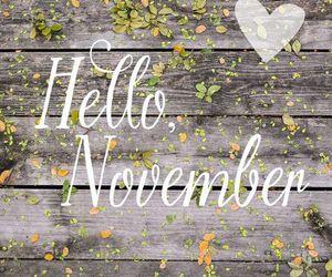 november and hello image