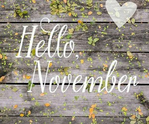 november and hello image