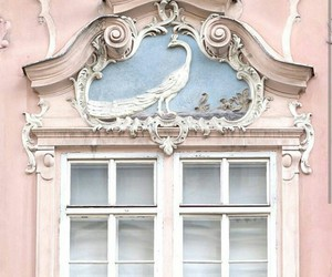 architecture, beauty, and bird image