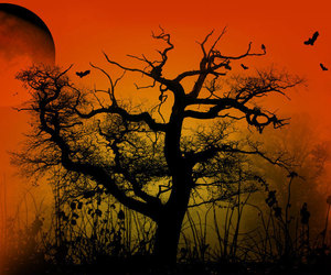 image, orange sky, and desolate image