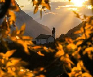 autumn, sunlight, and sunset image