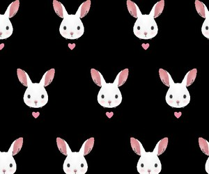 wallpaper and rabbit image