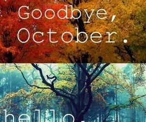 fall, hello, and novembre image