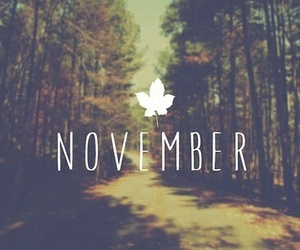 autumn, awesome, and hello november image