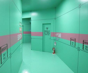 green, pink, and aesthetic image