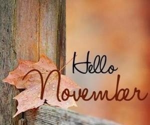 november, autumn, and hello image