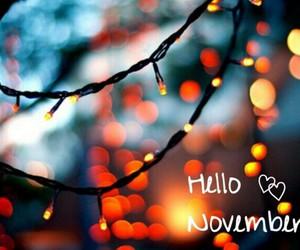fall, november, and autumn image