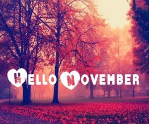 november and autumn image