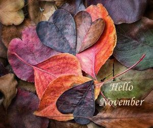 hello, november, and welcome image