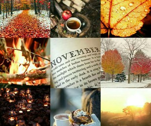 beautiful, cold, and november image