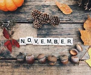 beautiful, fall, and november image