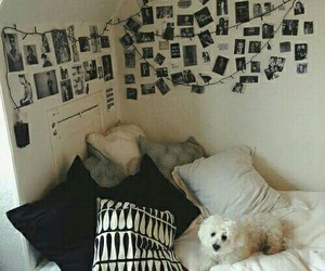 bedroom, dog, and ideas image