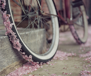 bike, pink, and pedals image