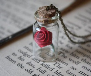 book, rose, and necklace image