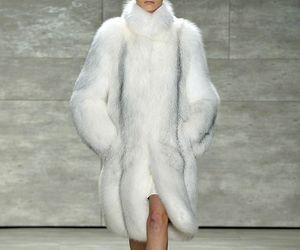 beauty, coat, and fashion image