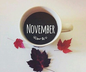 autumn, november, and coffee image