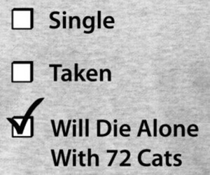 cat, single, and alone image