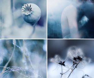 blue, Collage, and girl image