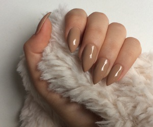 camel, nails, and Nude image