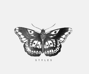 butterfly, tattoo, and overlay image