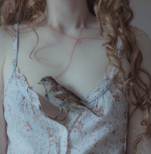 girl, bird, and pale image