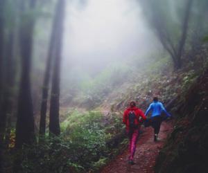 adventure, california, and foggy image