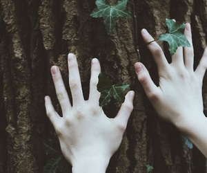 hands, tree, and nature image