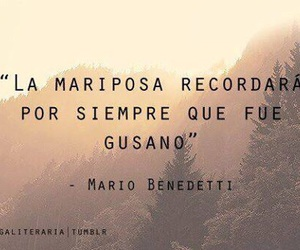 frases, butterfly, and mario benedetti image