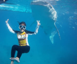 dive, enjoy, and whale shark image