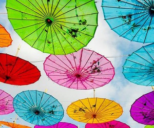umbrella and wallpaper image