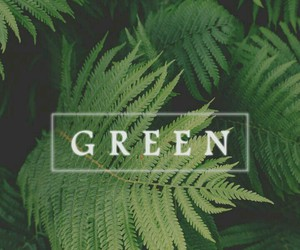 green, wallpaper, and background image