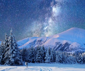 winter, snow, and stars image