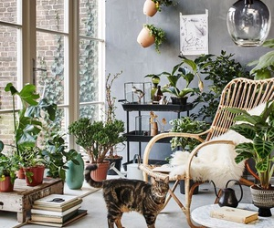 home, plants, and decor image