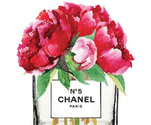 chanel, flowers, and red image