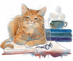 books and cat image