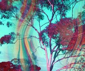 acid, lsd, and tree image