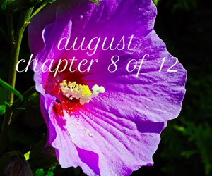 August, easel, and chapter image
