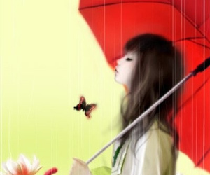butterfly, Enakei, and flower image