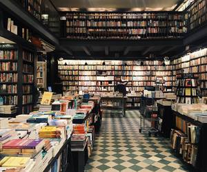 books, library, and livros image