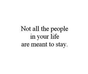 quote, stay, and life image