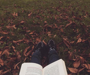 afternoon, autumn, and book image