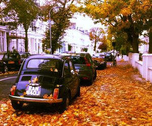 autumn, london, and uk image