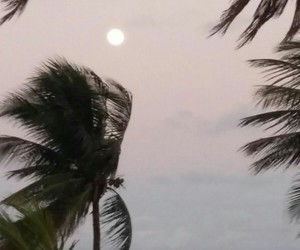 beach, jp, and moon image