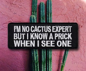 cactus, photography, and true quote image
