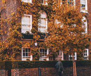 adventure, alternative, and autumn image