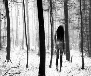 black and white, creepy, and black image